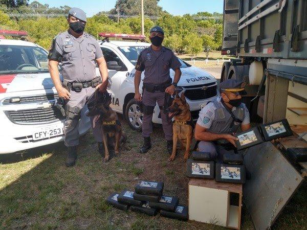 Policiamento Rodoviário prende 33 tabletes de cocaína com apoio de Cães do 8°BAEP em Cândido Mota.